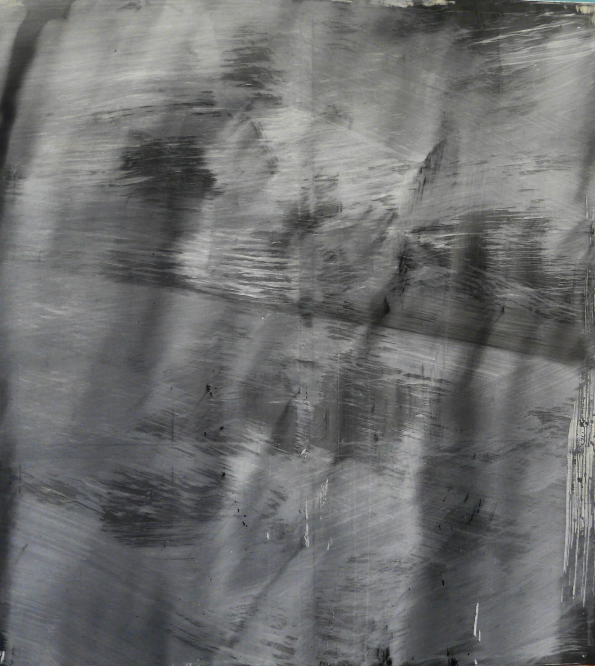 zahmlene makro 210x190cm akryl 2014
